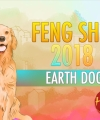 Feng Shui 2018 Earth Dog