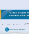 Financial Inclusion and Consumer Protection